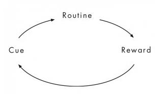 Habit Framework.PNG